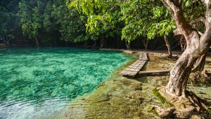 TOP 5 Krabi Tours Krabi – Most Popular Tours Emerald pool 2 300x170