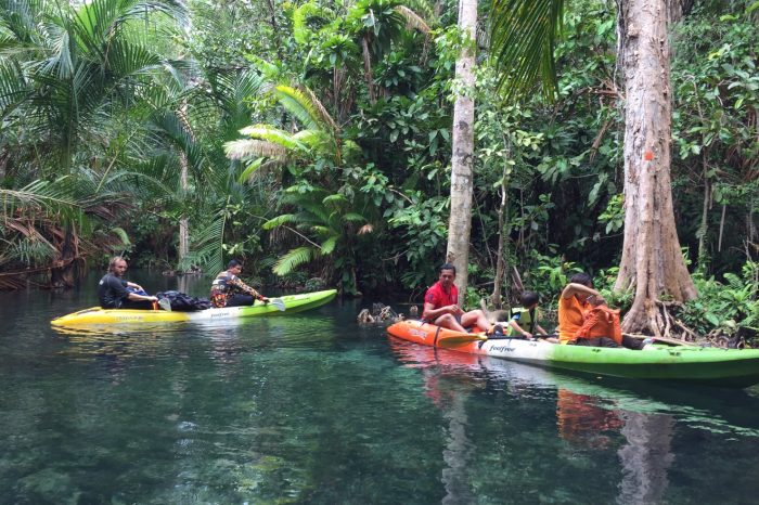 Kayaking at Klongnongtale Krabi things to do Things to Do, Destination, Tours & Activity KlongNamsai01 700x466