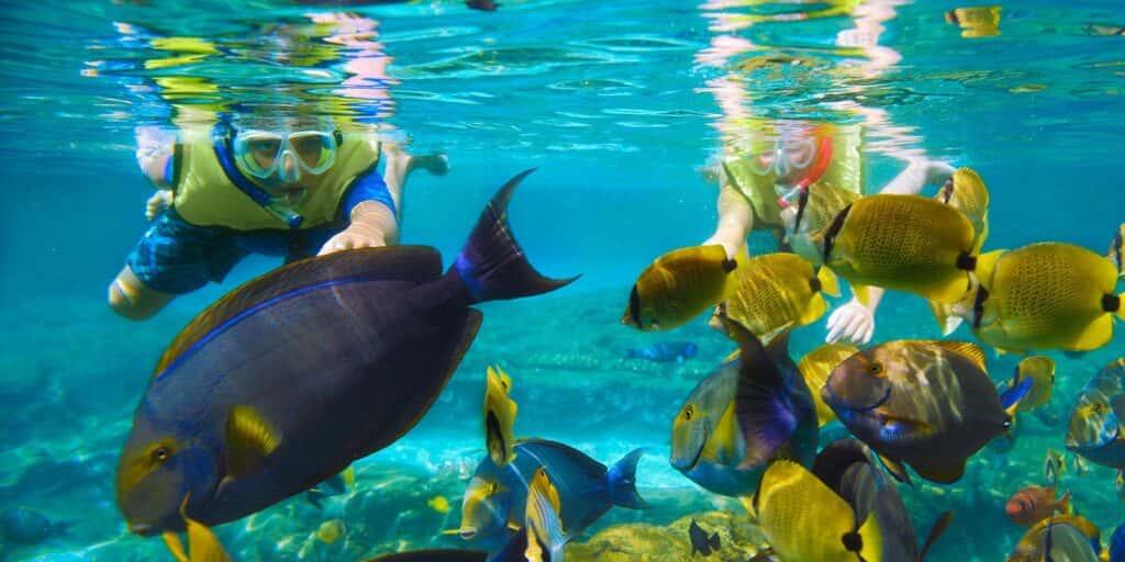 krabi nice sea snorkeling, krabi nice sea krabi nice sea snorkeling Krabi Nice Sea Snorkeling Tour Krabi Nice Sea Snorkeling Tour 1024x512