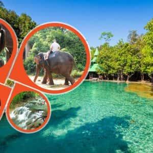 Krabi Jungle Tour , Elephant Trekking