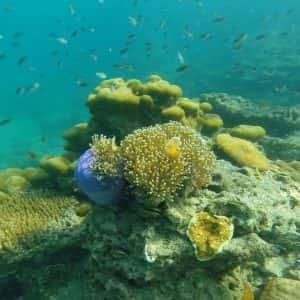 Morakot Cave, Snorkeling Tour From Koh Lanta, Emerald Cave, tour from koh lanta, koh lanta tours