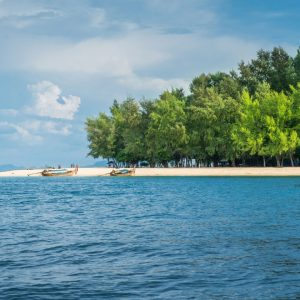bamboo island snorkeling, snorkeling from phi phi