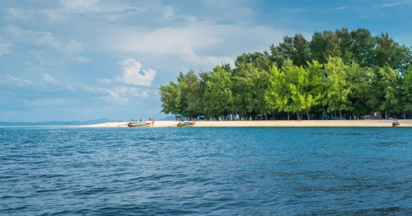 bamboo island snorkeling, snorkeling tour from phi phi, bamboo island phi phi, tour from phi phi