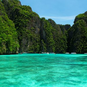Early Bird Phi Phi Island