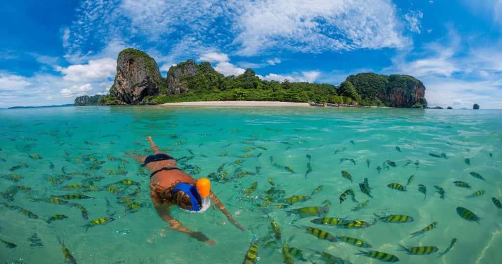 Snorkeling Phi Phi, phi phi island tour, tour from phi phi snorkeling phi phi Snorkeling Phi Phi Islands Tour From Phi Phi Don By Big Boat SnorkelingPhiPhiCover 1024x538
