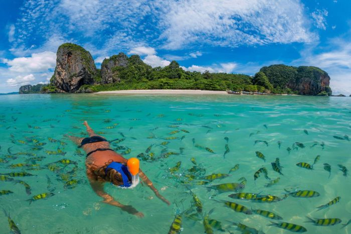 Snorkeling Phi Phi Islands Tour From Phi Phi Don By Big Boat