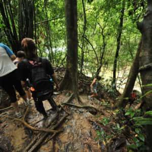 2 days 1 night khao sok jungle, elephant trekking tour, khao sok jungle trekking, tour from krabi