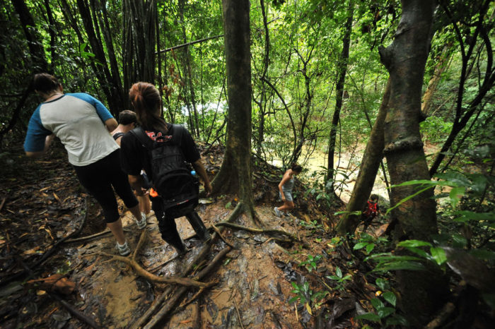 2 Days 1 Night Khao Sok Jungle with Elephant Trekking Tour from Krabi things to do Things to Do, Destination, Tours & Activity 2 Day 1 Night Khao Sok Jungle with Elephant Trekking Tour from Krabi Cover 700x466