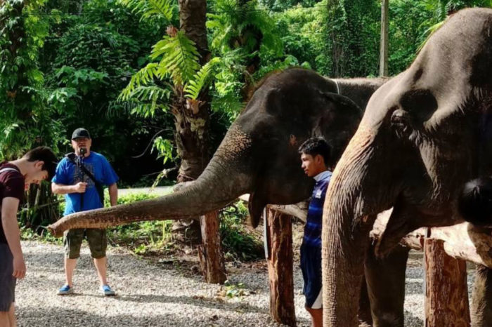 Krabi Elephant Heaven Sanctuary Park things to do Things to Do, Destination, Tours & Activity Krabi Elephant Heaven Sanctuary Park Cover 700x466