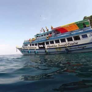 maya bay sunset cruise, plankton swimming from phi phi, sunset cruise phi phi, plankton swimming