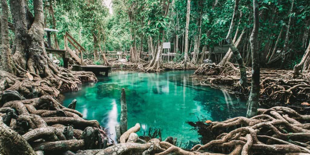 krabi attractions, thale waek (separated sea), koh poda, phi phi island, ao nang, railay bay krabi attractions Krabi attractions are must-see and worthwhile Tha Pom Khlong Song Nam 16 1024x512