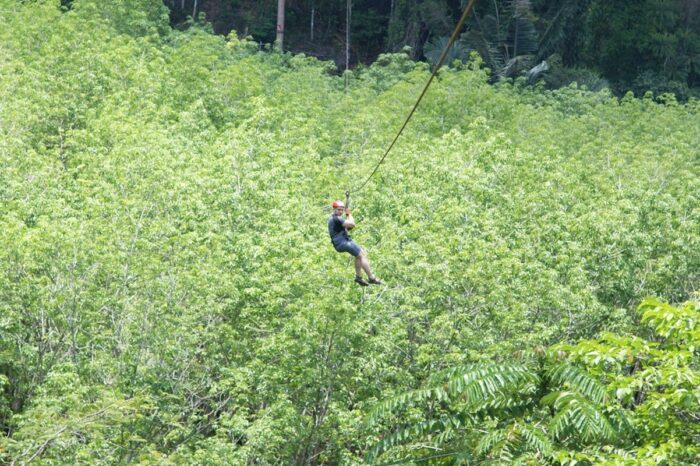 2 Hour Thai'd Up Adventures Zipline in Krabi search Search 2 Hour Thaid Up Adventures Zipline in Krabi 700x466